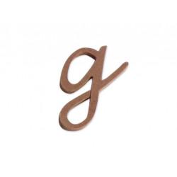 "Silueta letra minúscula ""g""."